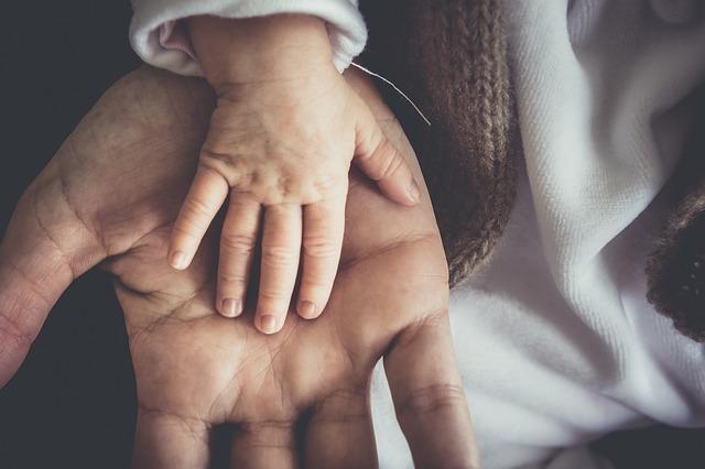 Elternstimmen zu Kids at home